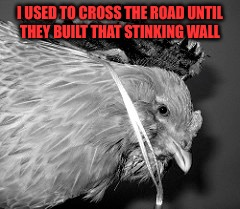 I USED TO CROSS THE ROAD UNTIL THEY BUILT THAT STINKING WALL | made w/ Imgflip meme maker