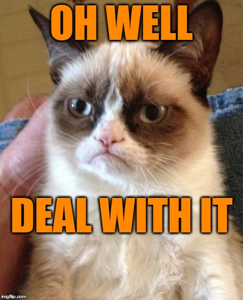 Grumpy Cat Meme | OH WELL DEAL WITH IT | image tagged in memes,grumpy cat | made w/ Imgflip meme maker