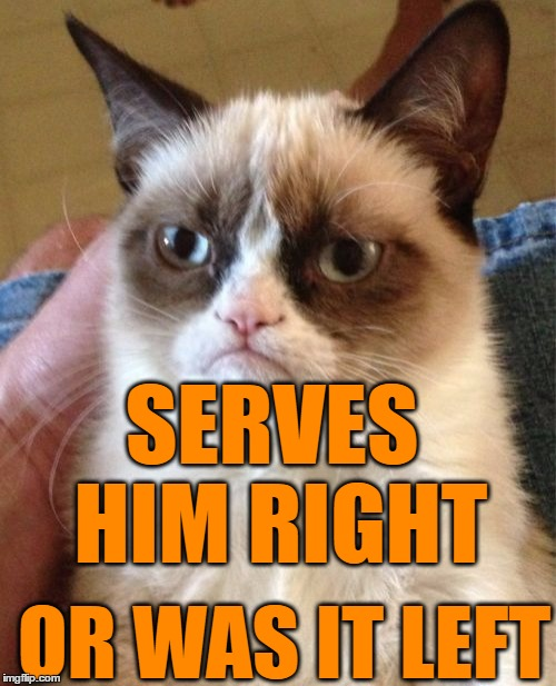 Grumpy Cat Meme | SERVES HIM RIGHT OR WAS IT LEFT | image tagged in memes,grumpy cat | made w/ Imgflip meme maker