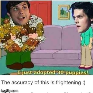 This is so accurate | image tagged in frank iero,gerard way,puppies,memes,funny,mcr | made w/ Imgflip meme maker
