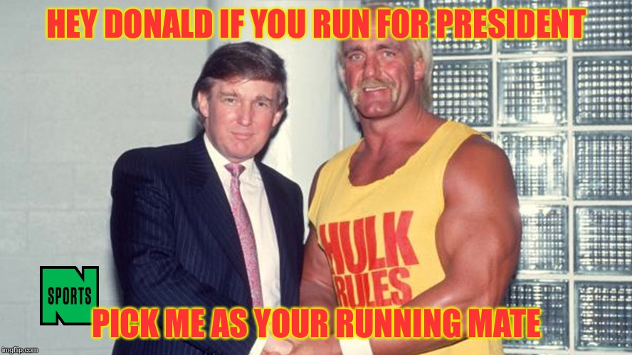 HEY DONALD IF YOU RUN FOR PRESIDENT PICK ME AS YOUR RUNNING MATE | made w/ Imgflip meme maker