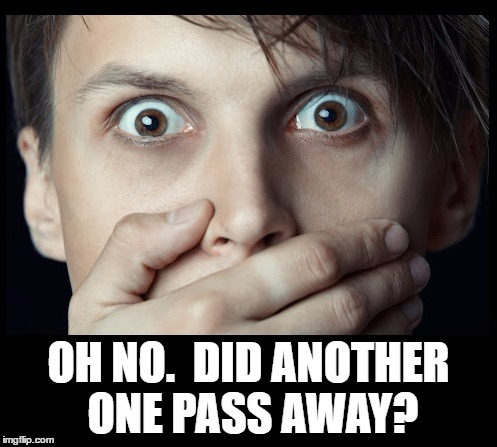 oh my | OH NO.  DID ANOTHER ONE PASS AWAY? | image tagged in oh my | made w/ Imgflip meme maker