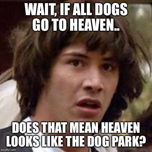 keanu Reeves  | WAIT, IF ALL DOGS GO TO HEAVEN.. DOES THAT MEAN HEAVEN LOOKS LIKE THE DOG PARK? | image tagged in keanu reeves | made w/ Imgflip meme maker