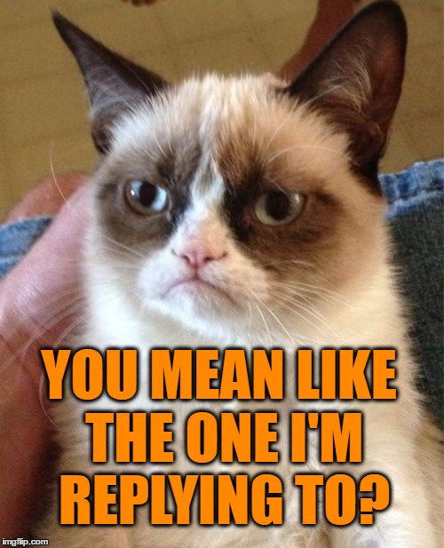 Grumpy Cat Meme | YOU MEAN LIKE THE ONE I'M REPLYING TO? | image tagged in memes,grumpy cat | made w/ Imgflip meme maker