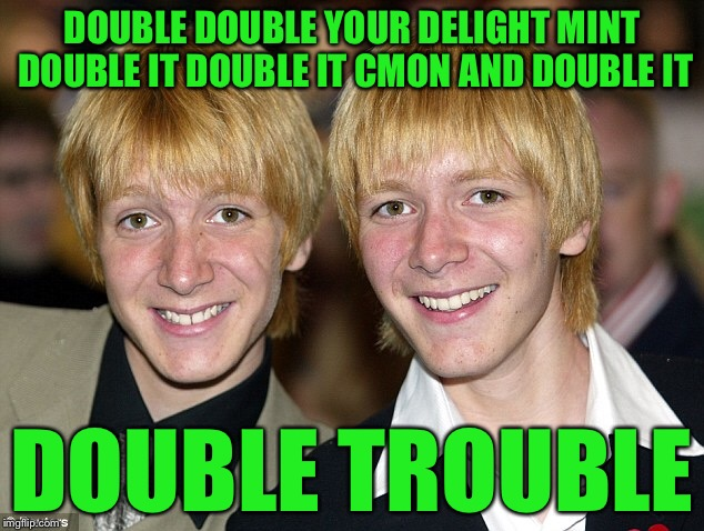 DOUBLE DOUBLE YOUR DELIGHT MINT DOUBLE IT DOUBLE IT CMON AND DOUBLE IT DOUBLE TROUBLE | made w/ Imgflip meme maker