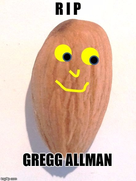 R I P GREGG ALLMAN | image tagged in mr almond | made w/ Imgflip meme maker