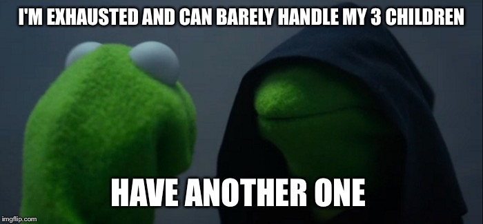Evil Kermit Meme | I'M EXHAUSTED AND CAN BARELY HANDLE MY 3 CHILDREN HAVE ANOTHER ONE | image tagged in evil kermit | made w/ Imgflip meme maker