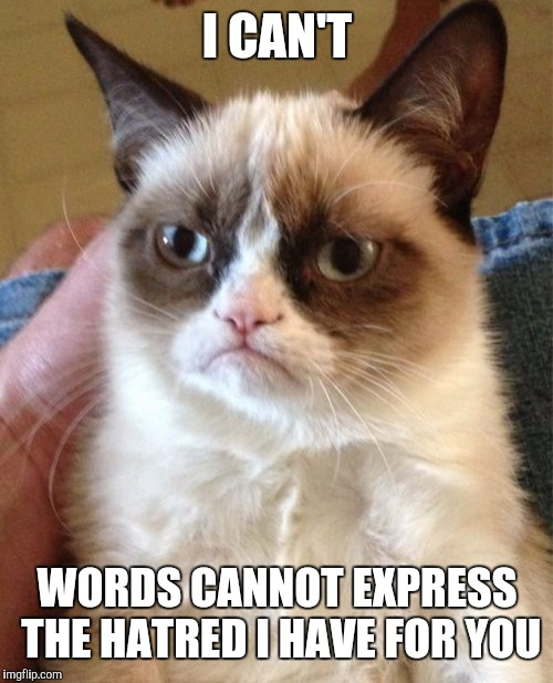 Grumpy Cat Meme | I CAN'T WORDS CANNOT EXPRESS THE HATRED I HAVE FOR YOU | image tagged in memes,grumpy cat | made w/ Imgflip meme maker