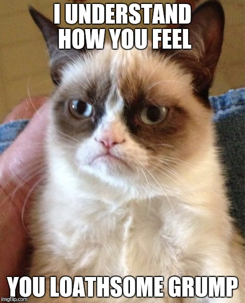 Grumpy Cat Meme | I UNDERSTAND HOW YOU FEEL YOU LOATHSOME GRUMP | image tagged in memes,grumpy cat | made w/ Imgflip meme maker
