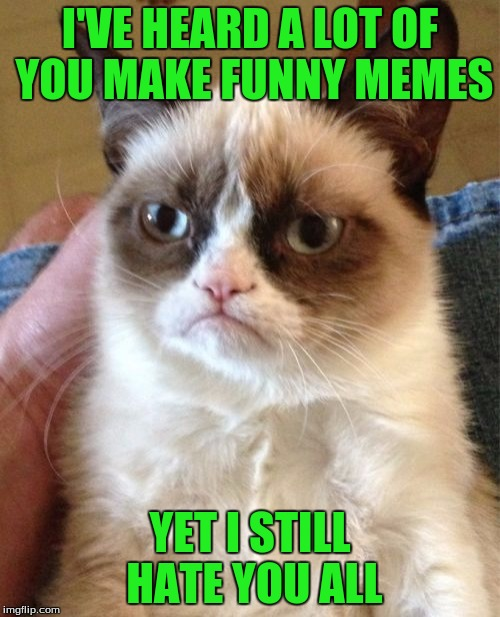 Grumpy Cat Meme | I'VE HEARD A LOT OF YOU MAKE FUNNY MEMES YET I STILL HATE YOU ALL | image tagged in memes,grumpy cat | made w/ Imgflip meme maker