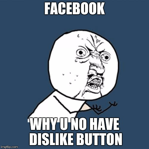 Y U No Meme | FACEBOOK WHY U NO HAVE DISLIKE BUTTON | image tagged in memes,y u no | made w/ Imgflip meme maker