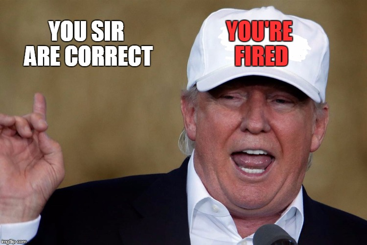 Donald Trump Blank MAGA Hat | YOU'RE FIRED YOU SIR ARE CORRECT | image tagged in donald trump blank maga hat | made w/ Imgflip meme maker