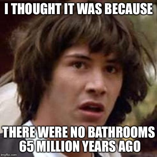 Conspiracy Keanu Meme | I THOUGHT IT WAS BECAUSE THERE WERE NO BATHROOMS 65 MILLION YEARS AGO | image tagged in memes,conspiracy keanu | made w/ Imgflip meme maker