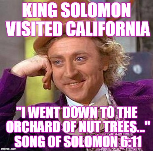 "Creepy Condescending Wonka Meme | KING SOLOMON VISITED CALIFORNIA ""I WENT DOWN TO THE ORCHARD OF NUT TREES..."" SONG OF SOLOMON 6:11 