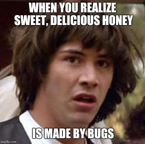 BUGS, dude. | WHEN YOU REALIZE SWEET, DELICIOUS HONEY IS MADE BY BUGS | image tagged in memes,conspiracy keanu,bugs,honey,eww,keanu reeves | made w/ Imgflip meme maker