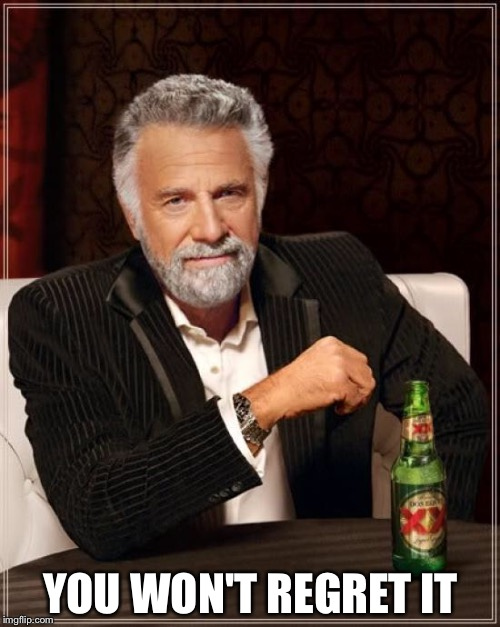 The Most Interesting Man In The World Meme | YOU WON'T REGRET IT | image tagged in memes,the most interesting man in the world | made w/ Imgflip meme maker