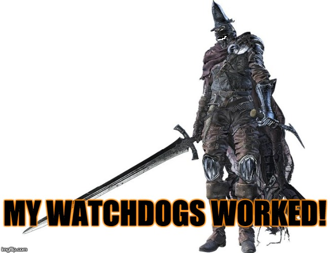 Abyss watcher | MY WATCHDOGS WORKED! | image tagged in abyss watcher | made w/ Imgflip meme maker