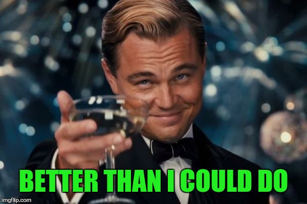 Leonardo Dicaprio Cheers Meme | BETTER THAN I COULD DO | image tagged in memes,leonardo dicaprio cheers | made w/ Imgflip meme maker
