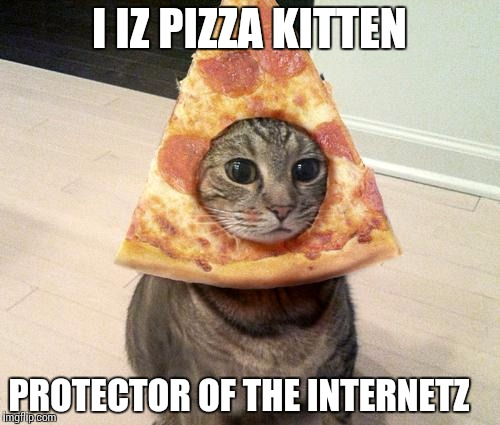 1puydb pizza cat meme generator imgflip,Pizza Cat Meme