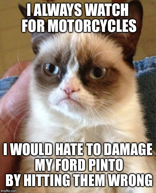 Grumpy Cat Meme | I ALWAYS WATCH FOR MOTORCYCLES I WOULD HATE TO DAMAGE MY FORD PINTO BY HITTING THEM WRONG | image tagged in memes,grumpy cat | made w/ Imgflip meme maker