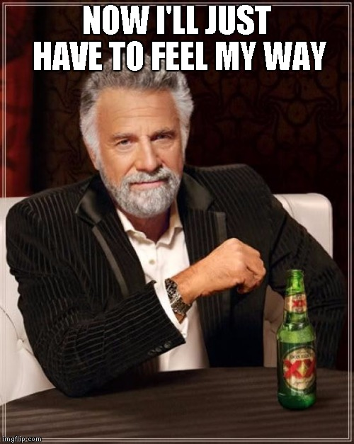 The Most Interesting Man In The World Meme | NOW I'LL JUST HAVE TO FEEL MY WAY | image tagged in memes,the most interesting man in the world | made w/ Imgflip meme maker