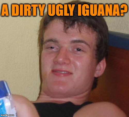 10 Guy Meme | A DIRTY UGLY IGUANA? | image tagged in memes,10 guy | made w/ Imgflip meme maker