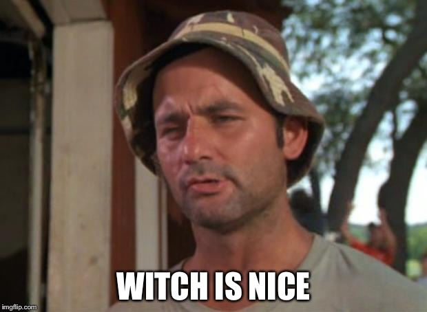 WITCH IS NICE | image tagged in witch,memes | made w/ Imgflip meme maker