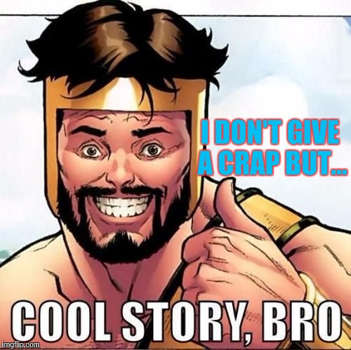 Cool Story Bro |  I DON'T GIVE A CRAP BUT... | image tagged in memes,cool story bro | made w/ Imgflip meme maker