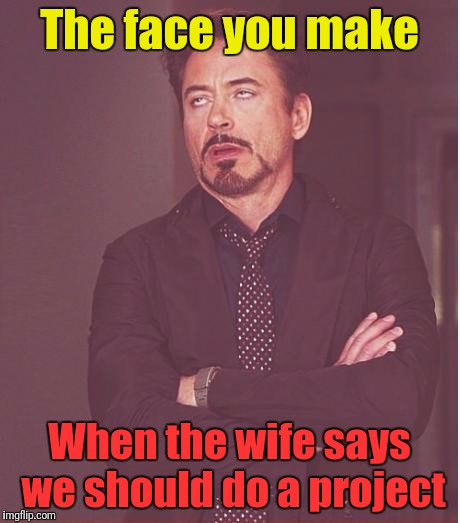 Holiday Weekend Project Face You Make  | The face you make When the wife says we should do a project | image tagged in memes,face you make robert downey jr,this old house,long weekend | made w/ Imgflip meme maker