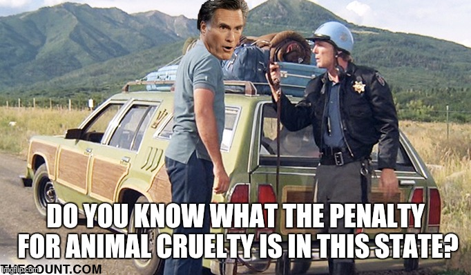 DO YOU KNOW WHAT THE PENALTY FOR ANIMAL CRUELTY IS IN THIS STATE? | made w/ Imgflip meme maker