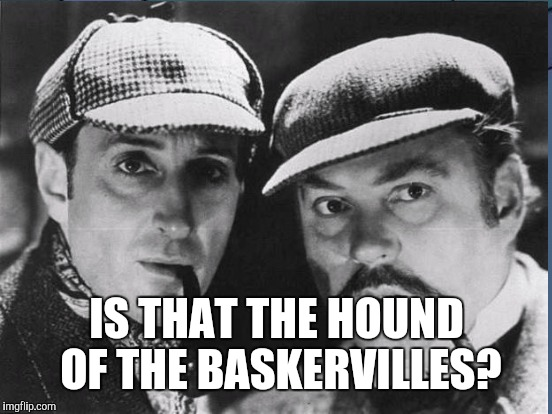 IS THAT THE HOUND OF THE BASKERVILLES? | made w/ Imgflip meme maker
