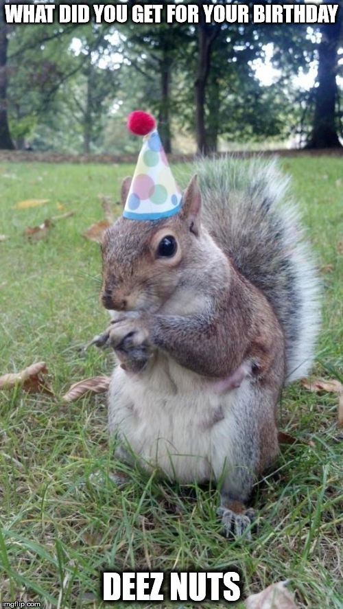 Super Birthday Squirrel | WHAT DID YOU GET FOR YOUR BIRTHDAY DEEZ NUTS | image tagged in memes,super birthday squirrel | made w/ Imgflip meme maker