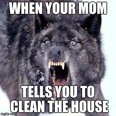 Angry Wolf | WHEN YOUR MOM TELLS YOU TO CLEAN THE HOUSE | image tagged in angry wolf | made w/ Imgflip meme maker