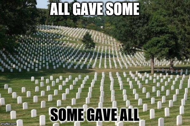 Fallen Soldiers | ALL GAVE SOME SOME GAVE ALL | image tagged in fallen soldiers | made w/ Imgflip meme maker