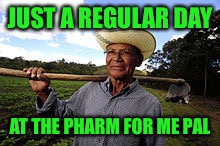 JUST A REGULAR DAY AT THE PHARM FOR ME PAL | made w/ Imgflip meme maker