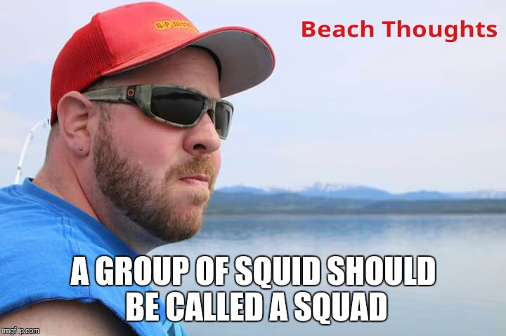 Tyler Doll  Meme Man | A GROUP OF SQUID SHOULD BE CALLED A SQUAD | image tagged in fishing,beach | made w/ Imgflip meme maker