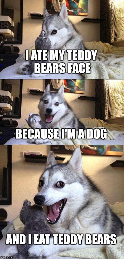 Bad Pun Dog Meme | I ATE MY TEDDY BEARS FACE BECAUSE I'M A DOG AND I EAT TEDDY BEARS | image tagged in memes,bad pun dog | made w/ Imgflip meme maker