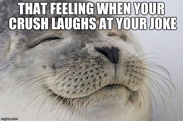 Satisfied Seal Meme | THAT FEELING WHEN YOUR CRUSH LAUGHS AT YOUR JOKE | image tagged in memes,satisfied seal | made w/ Imgflip meme maker