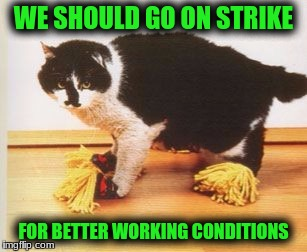 WE SHOULD GO ON STRIKE FOR BETTER WORKING CONDITIONS | made w/ Imgflip meme maker
