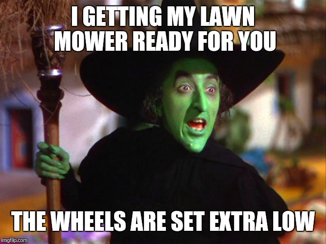 Memes | I GETTING MY LAWN MOWER READY FOR YOU THE WHEELS ARE SET EXTRA LOW | image tagged in memes | made w/ Imgflip meme maker