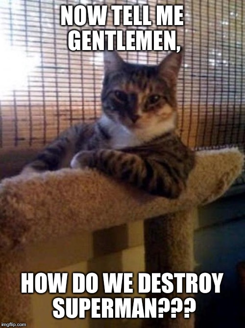 The Most Interesting Cat In The World Meme | NOW TELL ME GENTLEMEN, HOW DO WE DESTROY SUPERMAN??? | image tagged in memes,the most interesting cat in the world | made w/ Imgflip meme maker