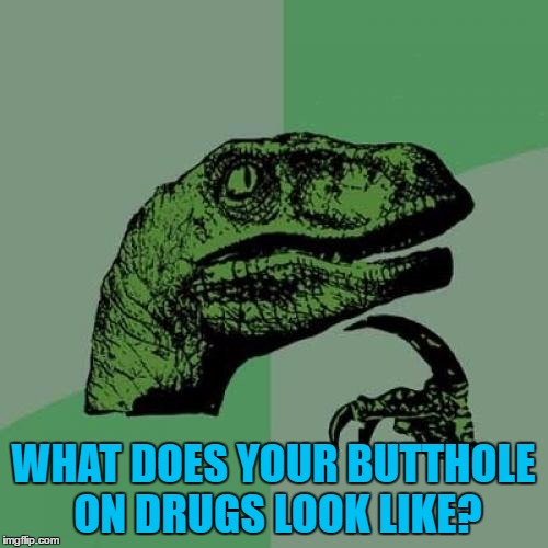 Philosoraptor Meme | WHAT DOES YOUR BUTTHOLE ON DRUGS LOOK LIKE? | image tagged in memes,philosoraptor | made w/ Imgflip meme maker