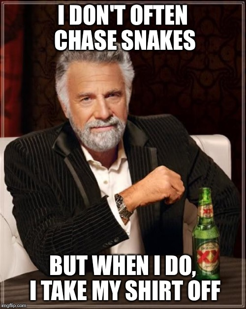 The Most Interesting Man In The World Meme | I DON'T OFTEN CHASE SNAKES BUT WHEN I DO, I TAKE MY SHIRT OFF | image tagged in memes,the most interesting man in the world | made w/ Imgflip meme maker