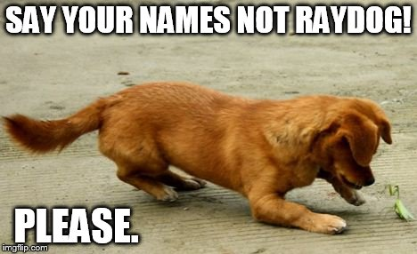 SAY YOUR NAMES NOT RAYDOG! PLEASE. | made w/ Imgflip meme maker