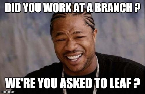 Yo Dawg Heard You Meme | DID YOU WORK AT A BRANCH ? WE'RE YOU ASKED TO LEAF ? | image tagged in memes,yo dawg heard you | made w/ Imgflip meme maker