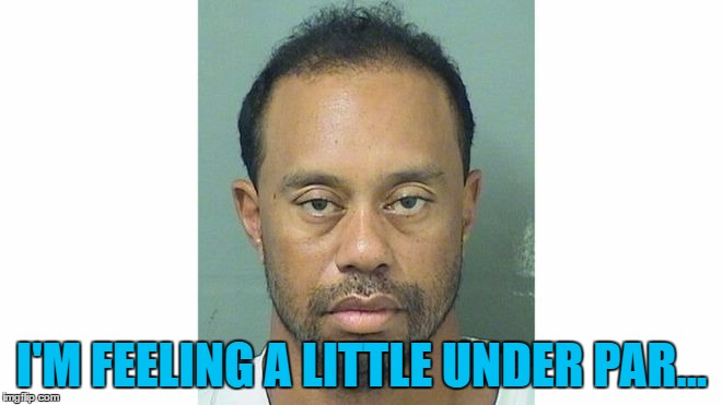 So would you be after getting arrested for DUI... | I'M FEELING A LITTLE UNDER PAR... | image tagged in memes,tiger woods,crime,mugshot,sport,golf | made w/ Imgflip meme maker