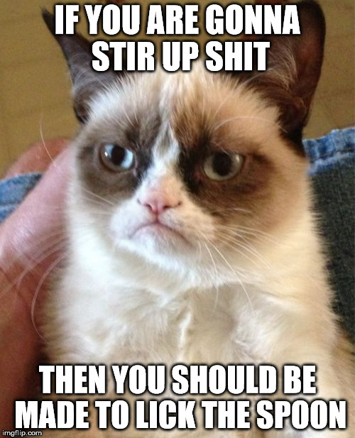 Grumpy Cat Meme | IF YOU ARE GONNA STIR UP SHIT THEN YOU SHOULD BE MADE TO LICK THE SPOON | image tagged in memes,grumpy cat | made w/ Imgflip meme maker