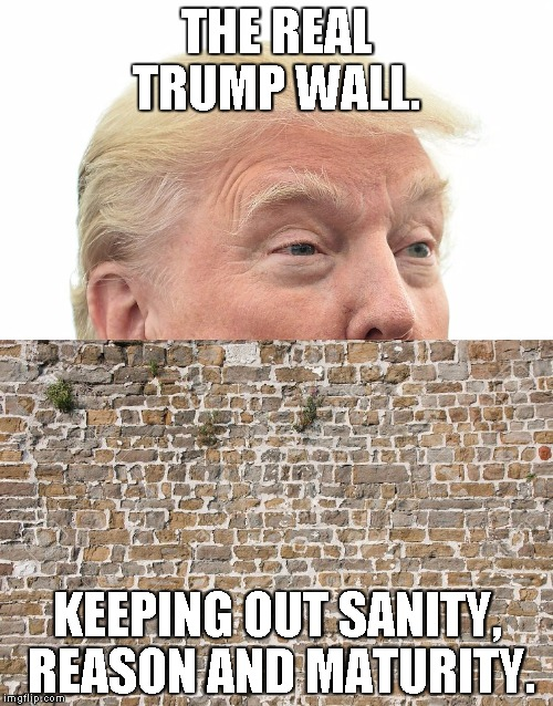 Trump Wall | THE REAL TRUMP WALL. KEEPING OUT SANITY, REASON AND MATURITY. | image tagged in trump wall | made w/ Imgflip meme maker