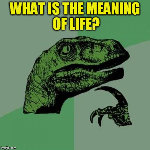 Philosoraptor Meme | WHAT IS THE MEANING OF LIFE? | image tagged in memes,philosoraptor | made w/ Imgflip meme maker