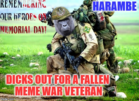 Died a Year ago yesterday, Yet Harambe will live on in memes  | HARAMBE DICKS OUT FOR A FALLEN MEME WAR VETERAN | image tagged in harambe,memorial day,memes,meme war,dank memes | made w/ Imgflip meme maker